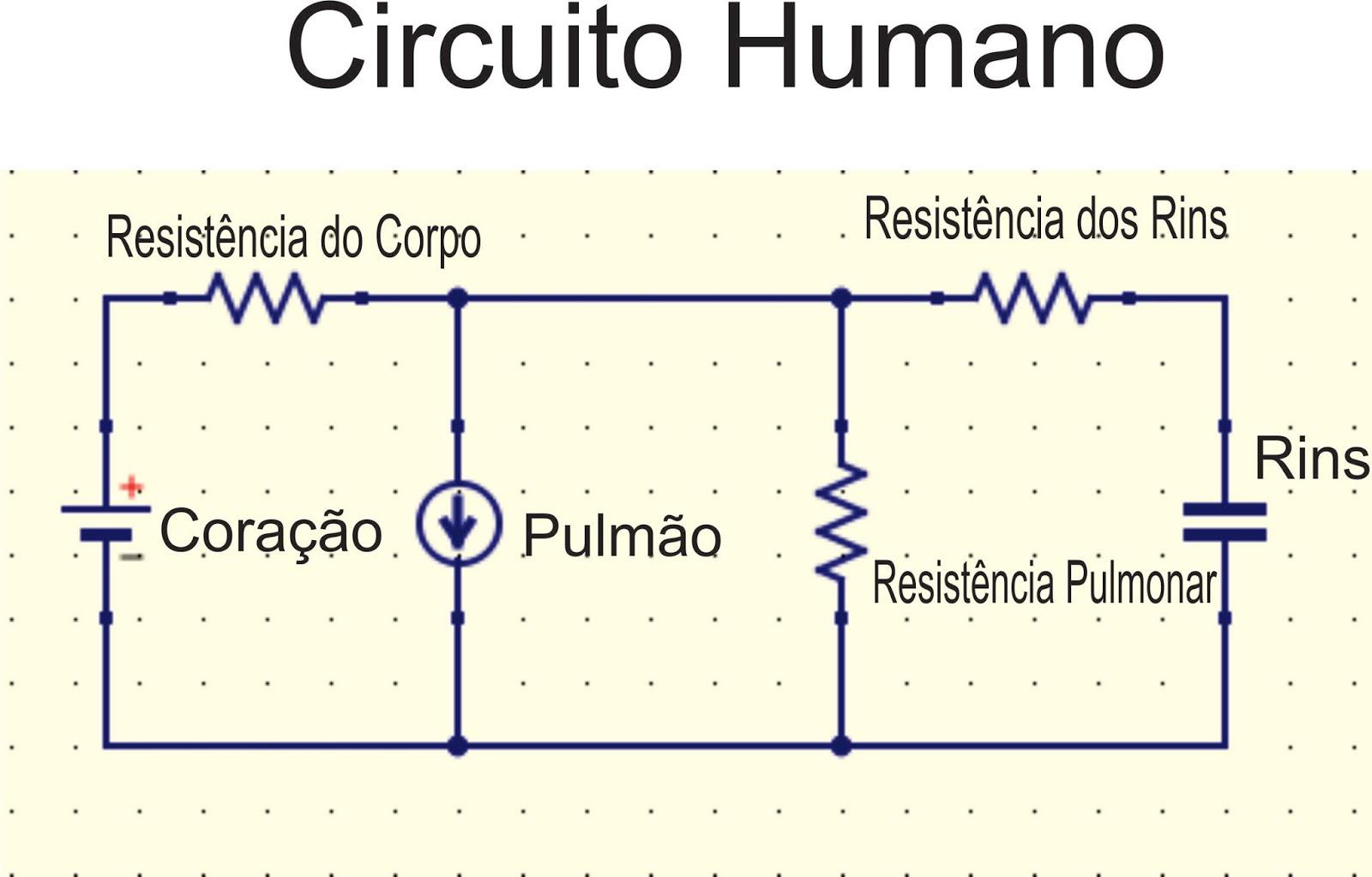 Circuito Eletricos : Biofísica aplicada circuito humano circuito elétrico que dá a vida