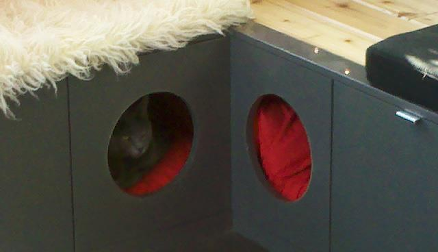 Cat Cubby Window Seat With Ikea Akurum Kitchen Cabinets