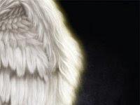 "Resenha Nacional ""Iluminados"" - Iasmine Guidogli"