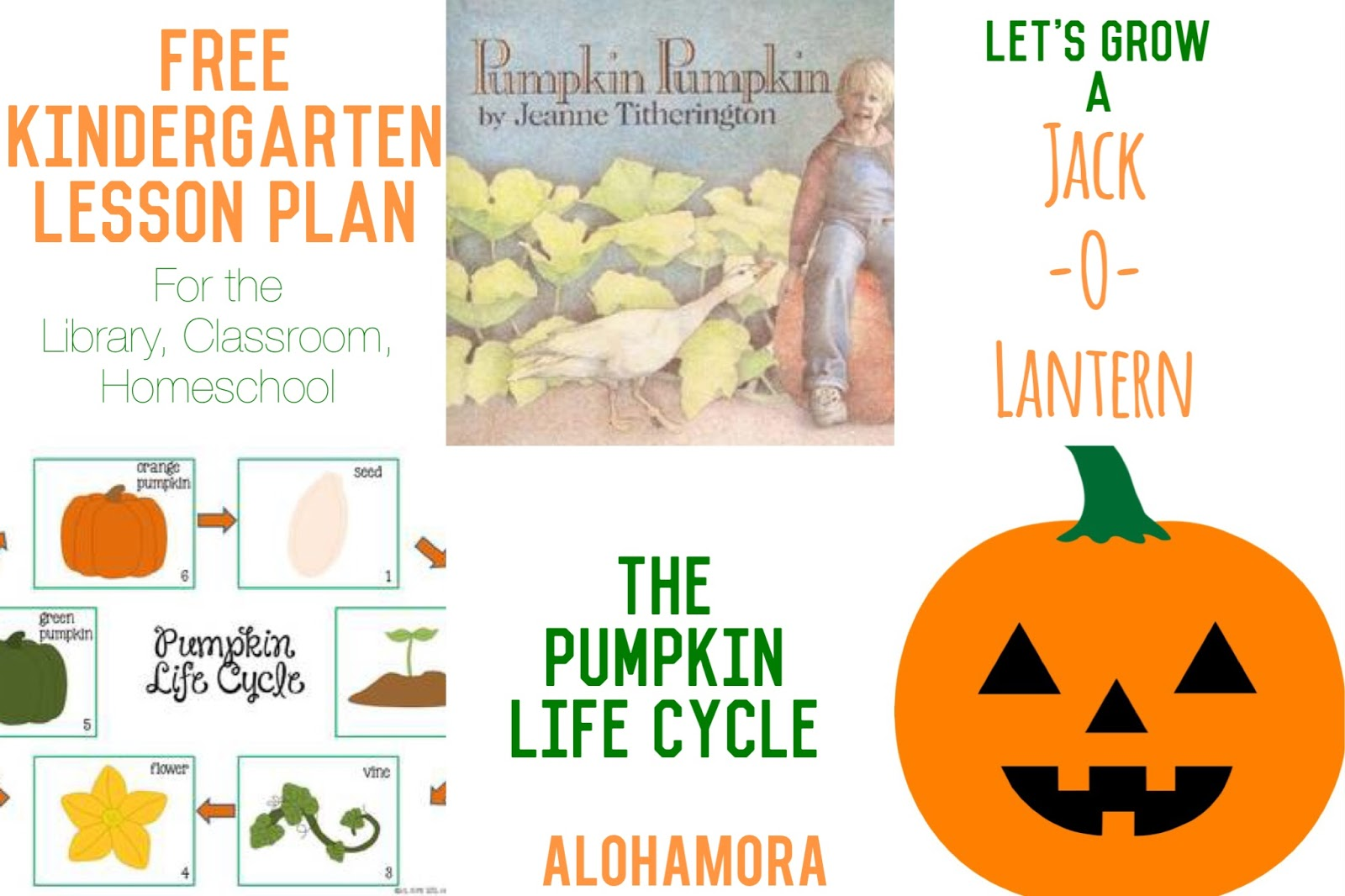 Free Kindergarten Lesson Plan using a picture book, Pumpkin, Pumpkin by Jeanne Titherington.  How to Grow a Jack-O-Lantern and the Life Cycle of a Pumpkin.  Could be used in First or Second Grade as well. Alohamora Open a Book http://www.alohamoraopenabook.blogspot.com/