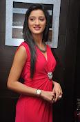 Richa Panai latest glamorous photos-thumbnail-8