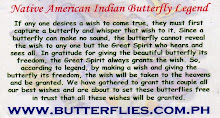 Native American Indian Butterfly Legend