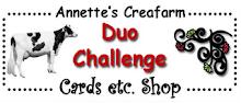 Duo-Challenge Blog