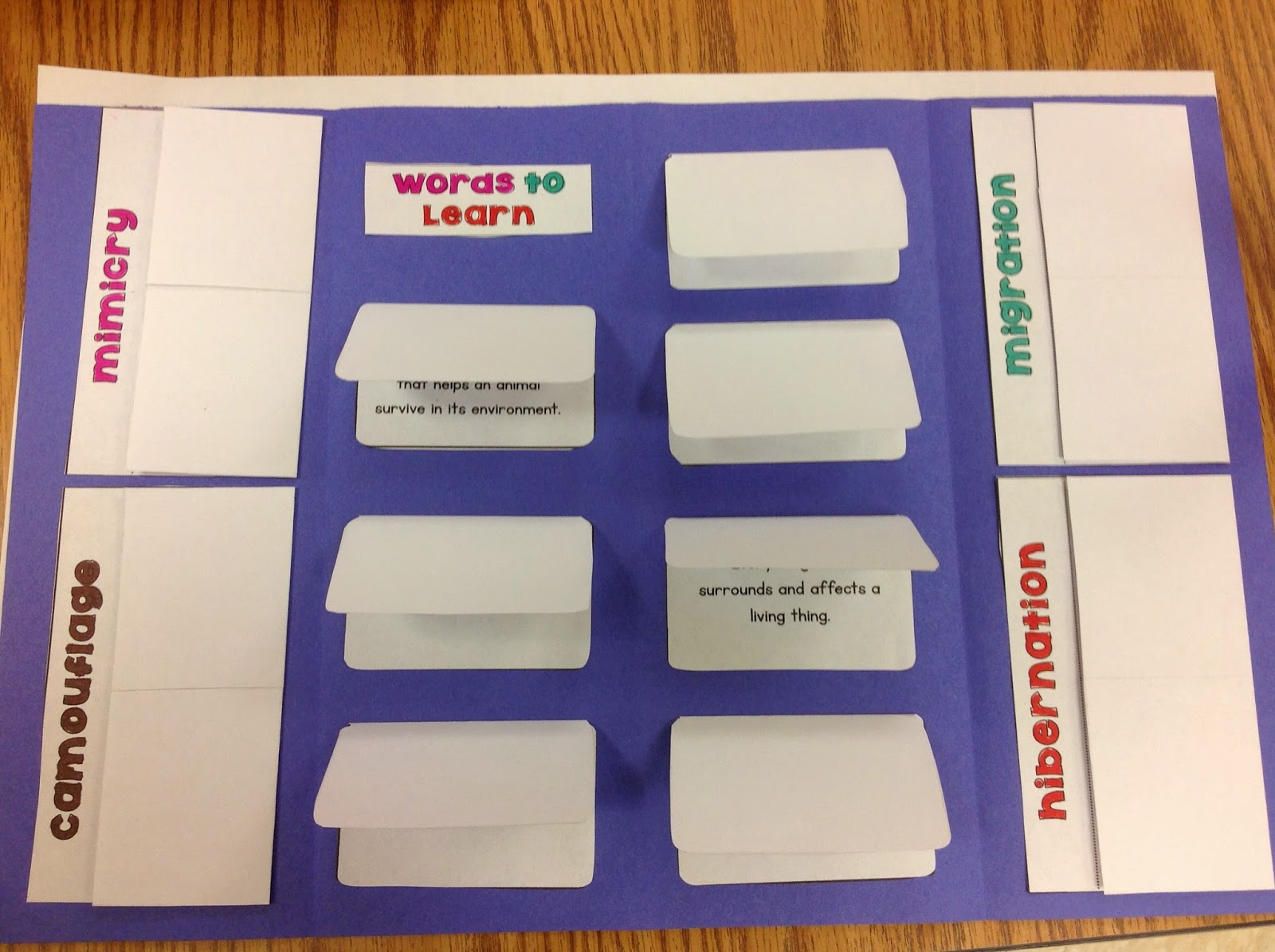 similiar vocabulary foldable keywords