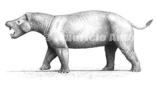 paleocene mammals Coryphodon