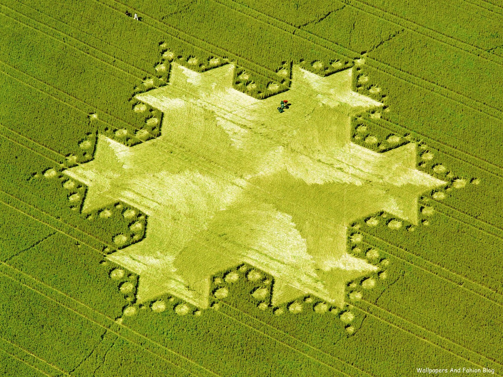 http://3.bp.blogspot.com/-6nIMOb9dn2c/TpjfWJDJr0I/AAAAAAAACsA/hPCuuSrLERs/s1600/Koch+Snowflake%252C+Silbury+Hill%252C+England%252C+1997.jpg