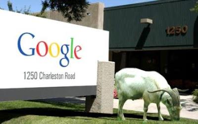 google googleplex cabras cortar cesped