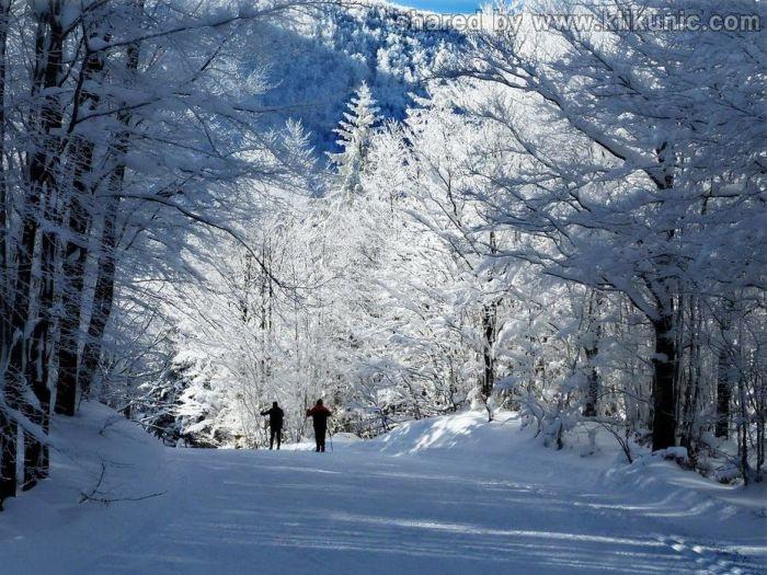 http://3.bp.blogspot.com/-6nZI2U2adlY/TXltlqL5BGI/AAAAAAAAQ0Q/HMcB82My63E/s1600/winter_46.jpg