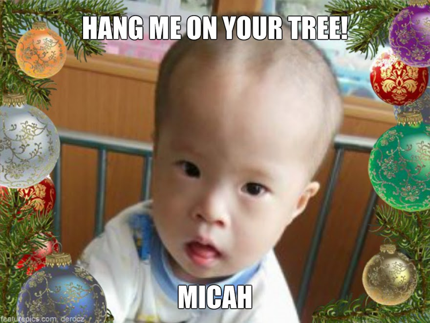 Hang me on your tree - Micah