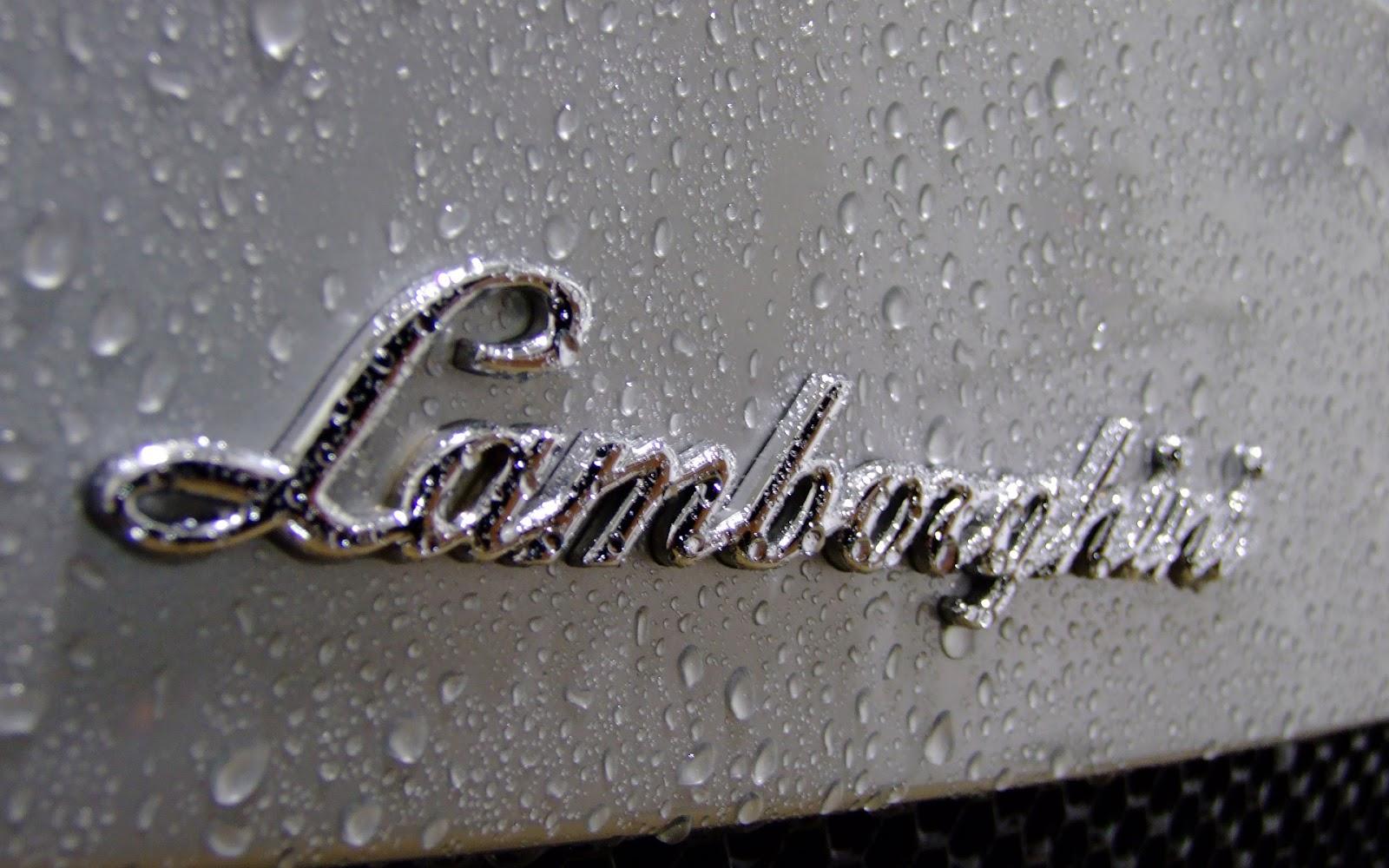 Lamborghini Logo Wallpaper HD