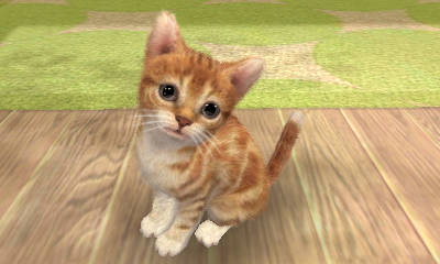Nintendogs Cats Os