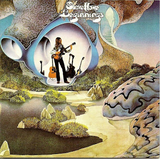 Steve Howe - Beginnings album cover