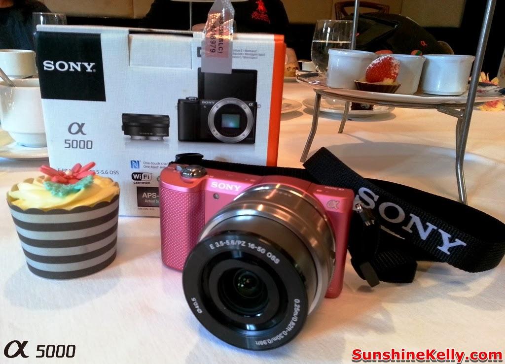 Sony Alpha 5000, Sony Alpha 5000 Bloggers Gathering, carcosa Seri Negara, pink