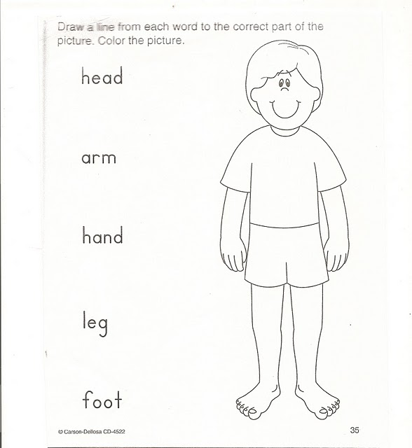 Fichas de Inglés para niños: Worksheets parts of body