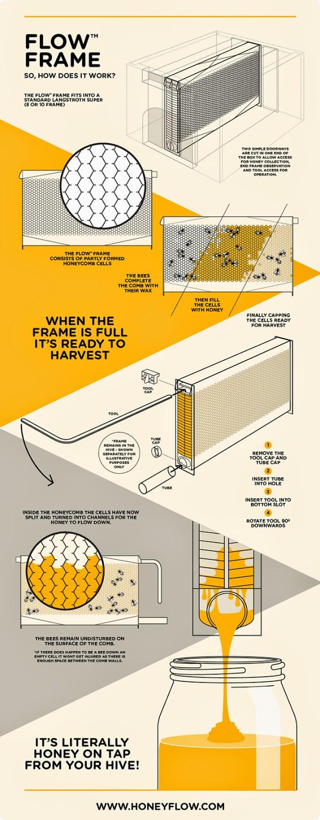 inovasi-baru-proses-ekstrasi-sari-madu-sarang-lebah-desain-ruang dan rumahku-005
