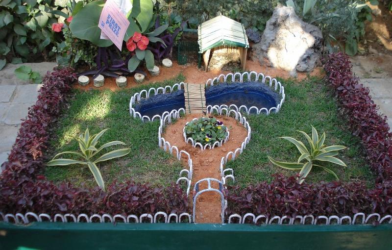 Tray gardens for balconies bonsais plants as gifts for Tray garden designs
