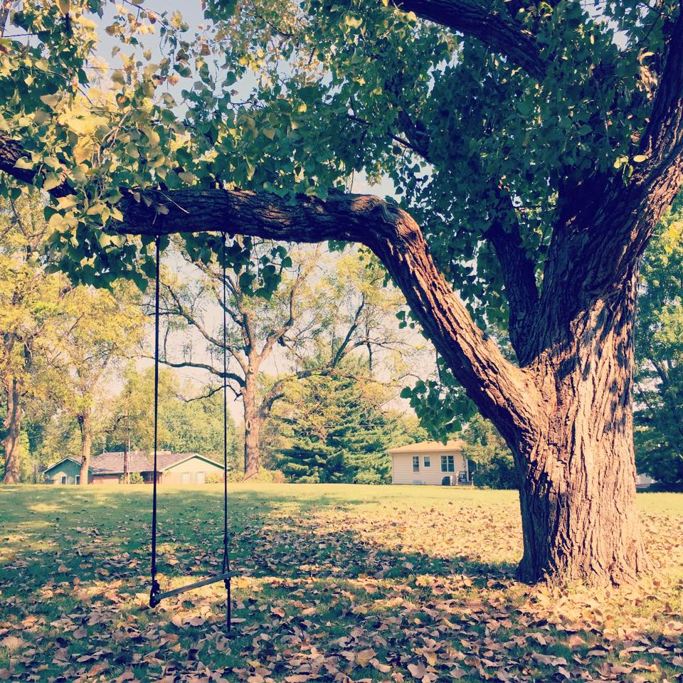 Perfect Backyard Tree :  Every house deserves the perfect backyard tree swing, dont you think
