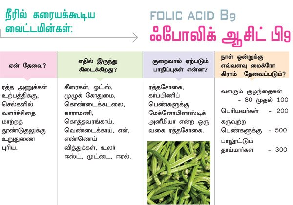 vitamin foods list in tamil pdf