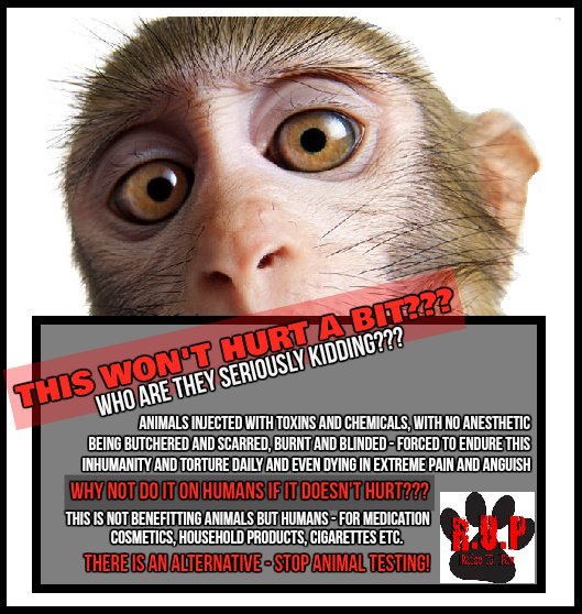an inhumanity of the animal experimentation It seems like the definition of inhumanity, especially when you consider the growing evidence that animals ha nobody likes the idea of experimenting on animals it seems like the definition of inhumanity, especially when you consider the growing evidence that animals ha  can technology help us put an end to animal experimentation | leapmind.