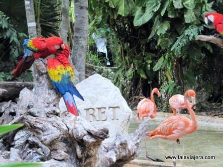 Parque Ecológico Xcaret, en la Riviera Maya mexicana