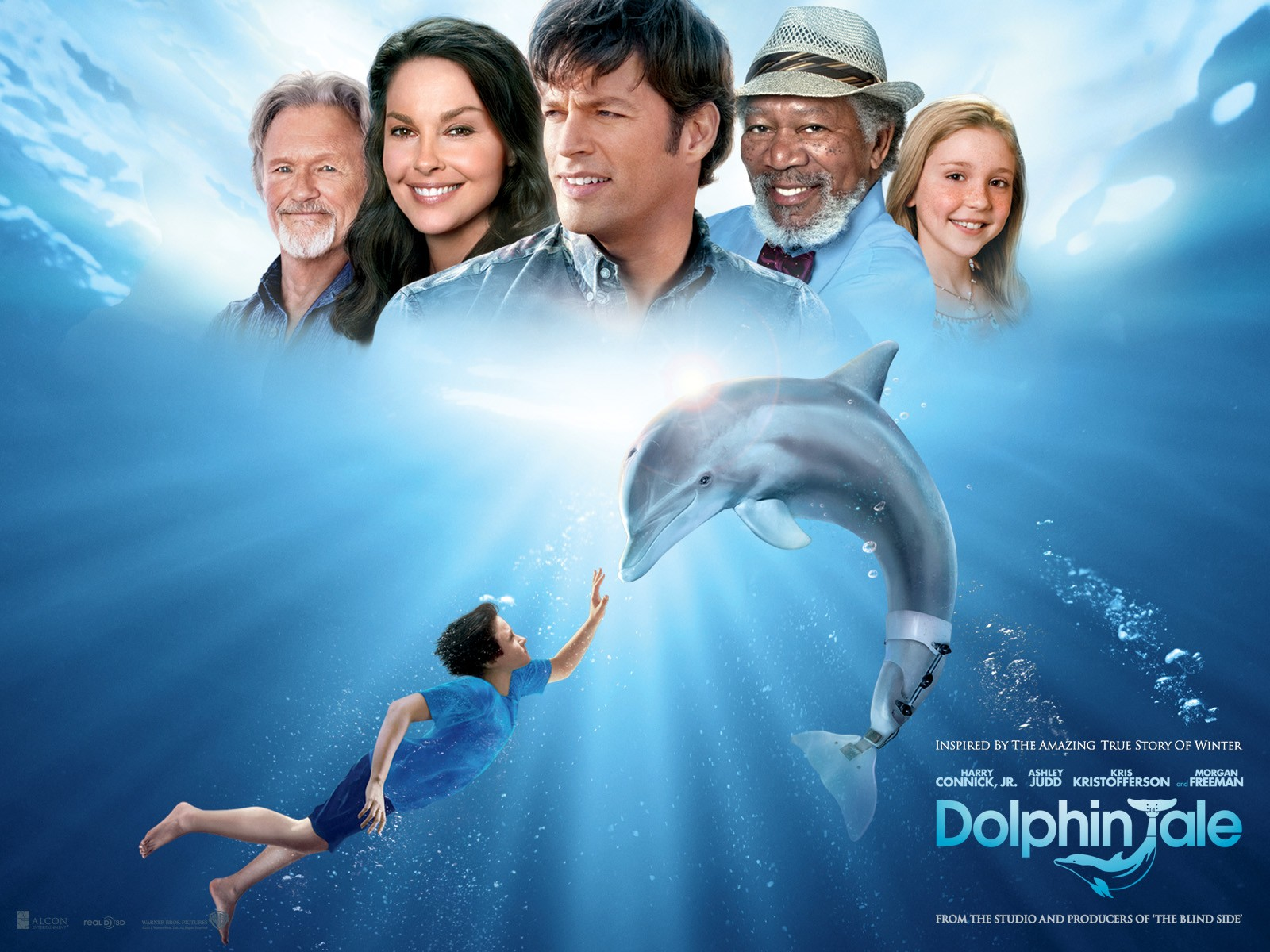 dophin tale