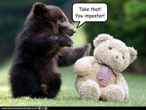 beruang palsu- beruang lucu