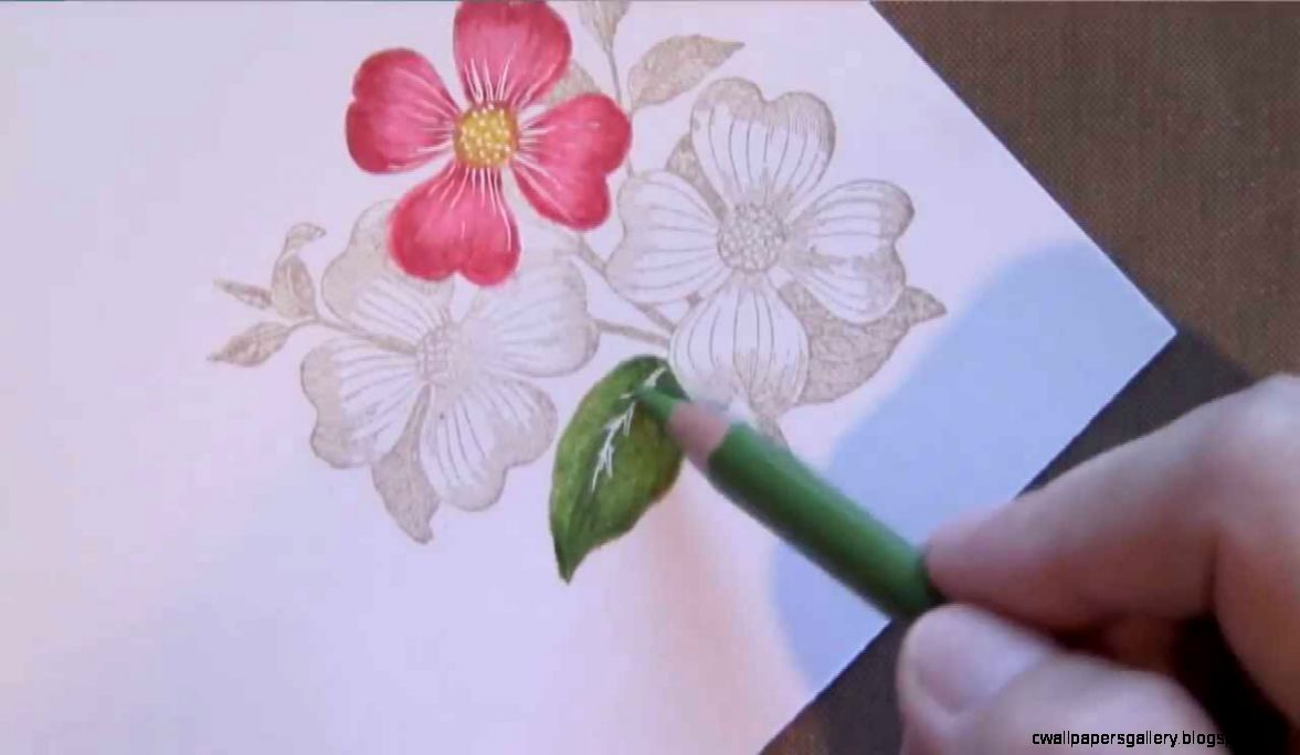 Colored Pencil Flowers   YouTube