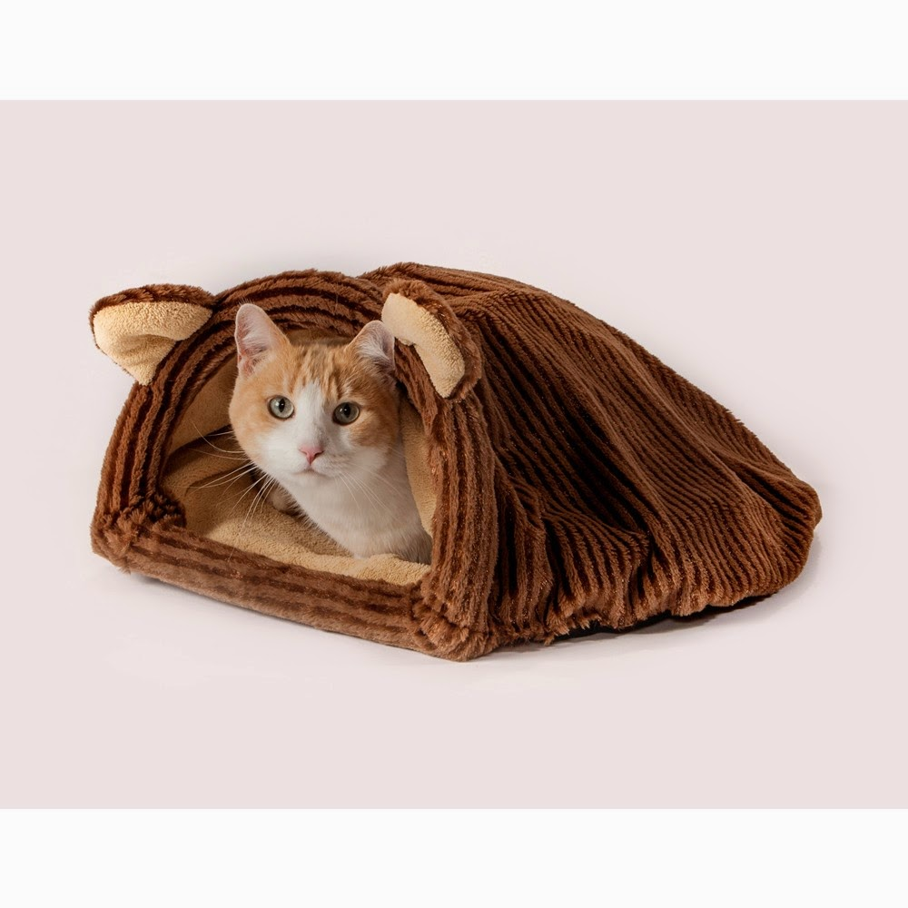 Cat Burrowing and Sleeping Bag