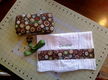 Travel Wipe Case, Pacifier Clip, and Burp Cloth