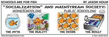 benefits of homeschooling vs public schooling