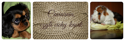 Caviarnia, czyli cichy kącik