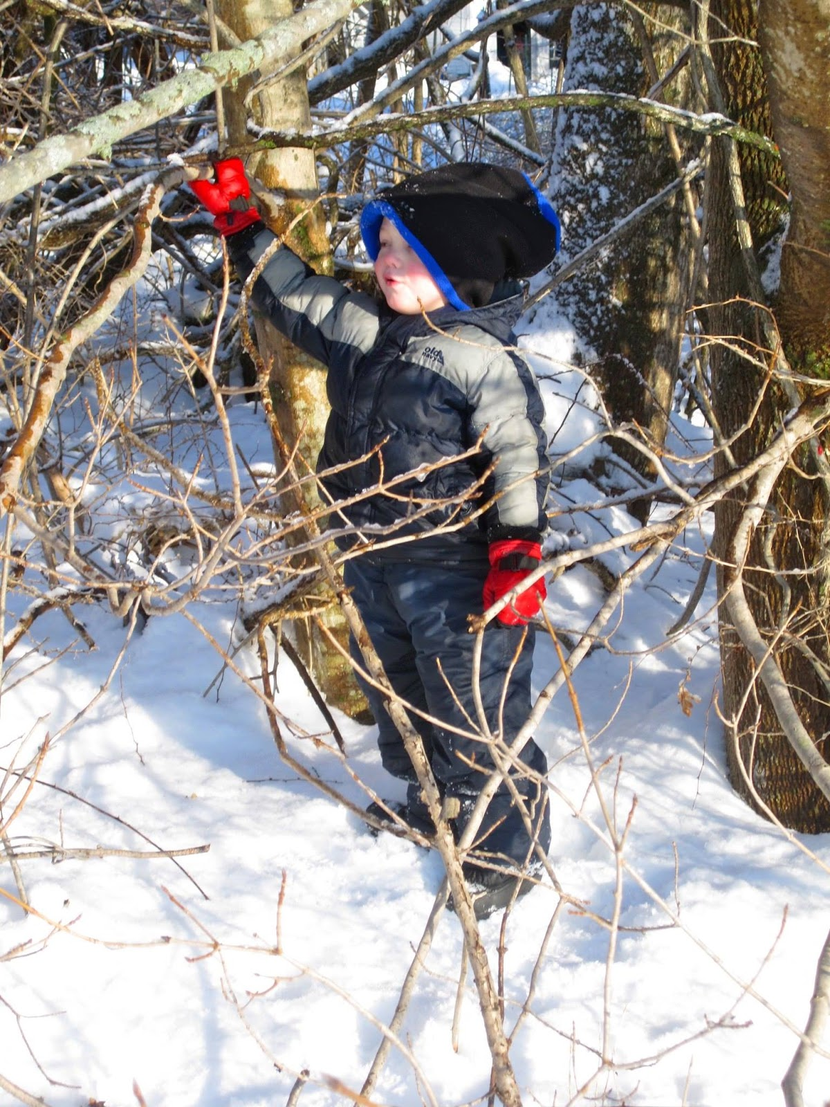 boy on the snow bank