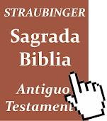 La Biblia Comentada en .pdf