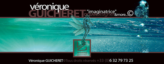"Véronique GUICHERET© ""imaginatrice"", OCEANdesigner & more..."