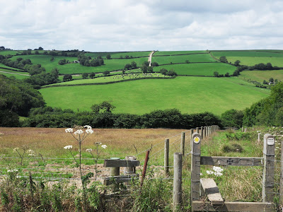 Country view near Golant Cornwall