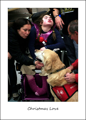 woman with yellow Lab interact with child in wheelchair