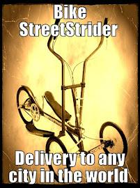 Bike StreetStrider