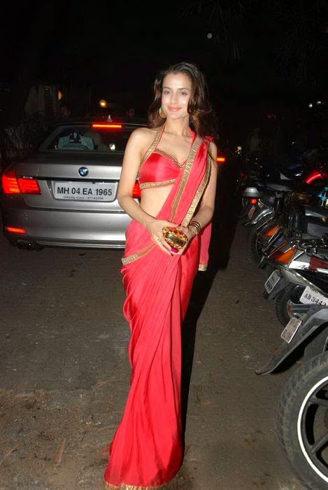 Amisha Patel Hot In Red Saree Photo Gallery