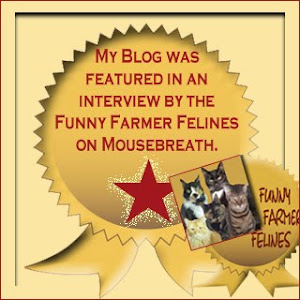 My interview on Mousebreath