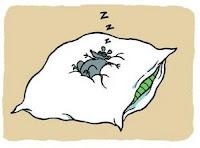 Remède naturel contre la fatigue: plus de sommeil