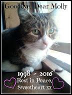 Sweet Molly (1998-2016)