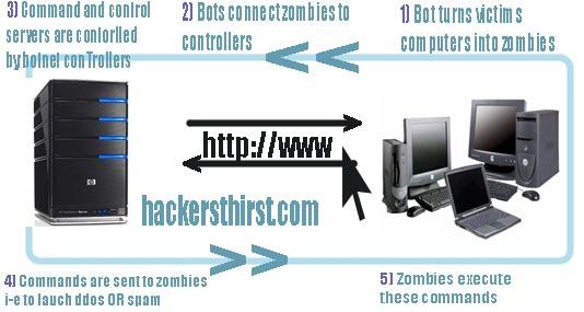 botnet scheme