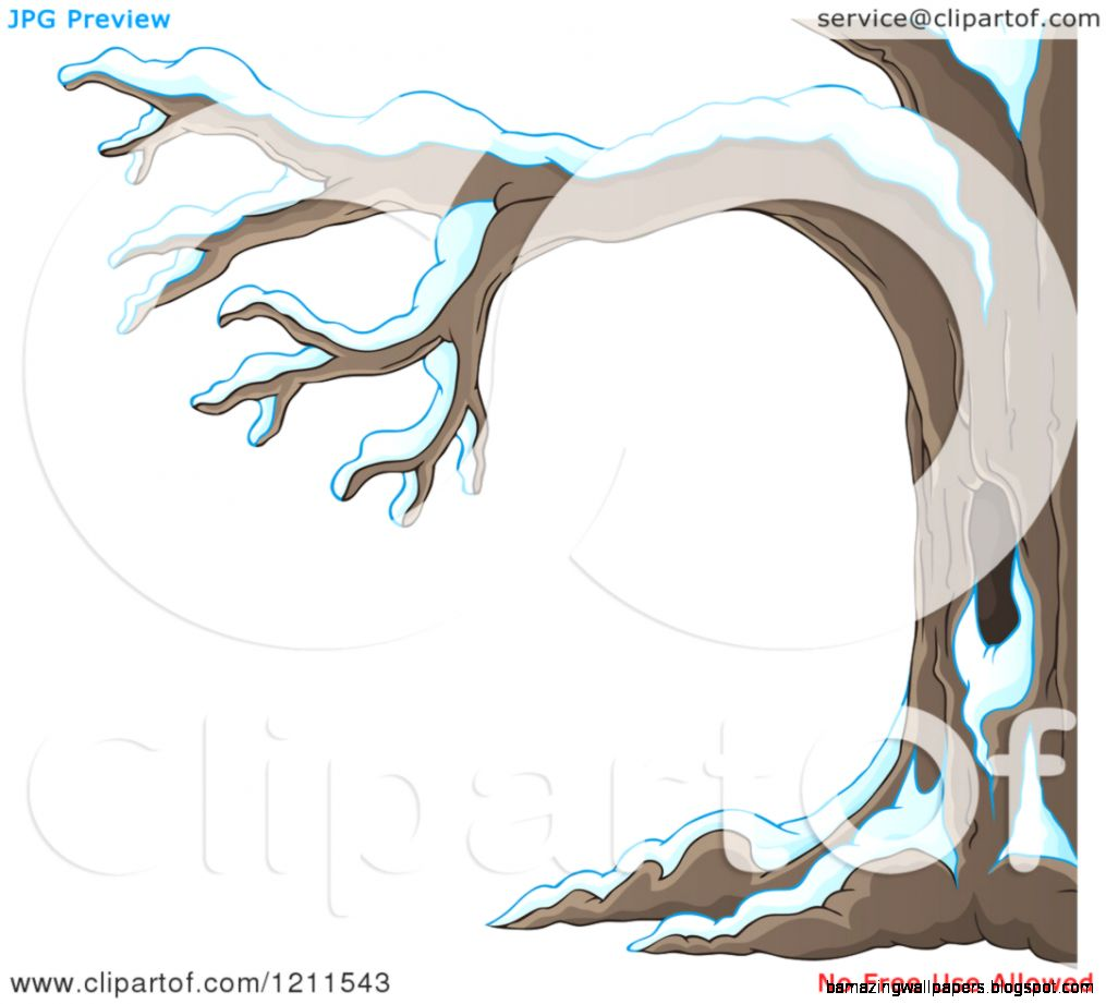 Cartoon of a Winter Tree Flocked in Snow   Royalty Free Vector