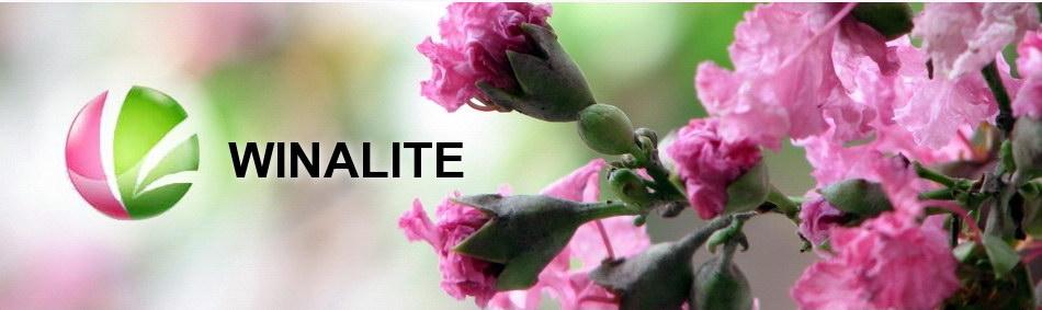 Produk Winalite