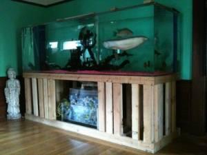 Giant aquariums 400 gallon aquarium fish tank 1700 for Fish tanks craigslist