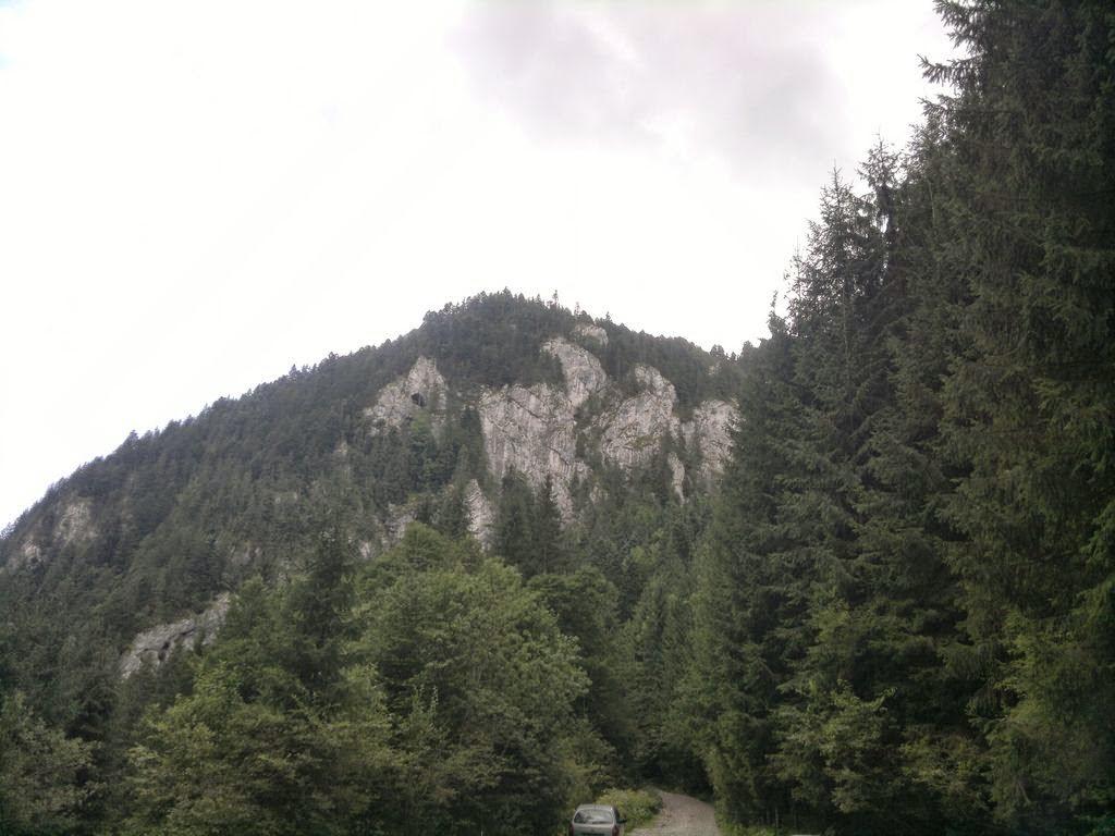 Runsilvania WILD RACE. Competiţie de alergare montană, gulaş, bere şi Răchiţele. O excursie frumoasă la munte. Vârf de munte