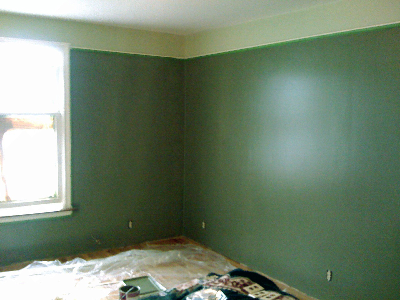 Amazing and simple sage green paint placement billion for Dark sage green paint color