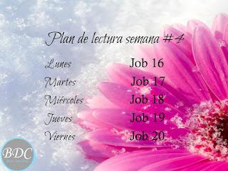 Plan de lectura Semana #4- Estudio de Job