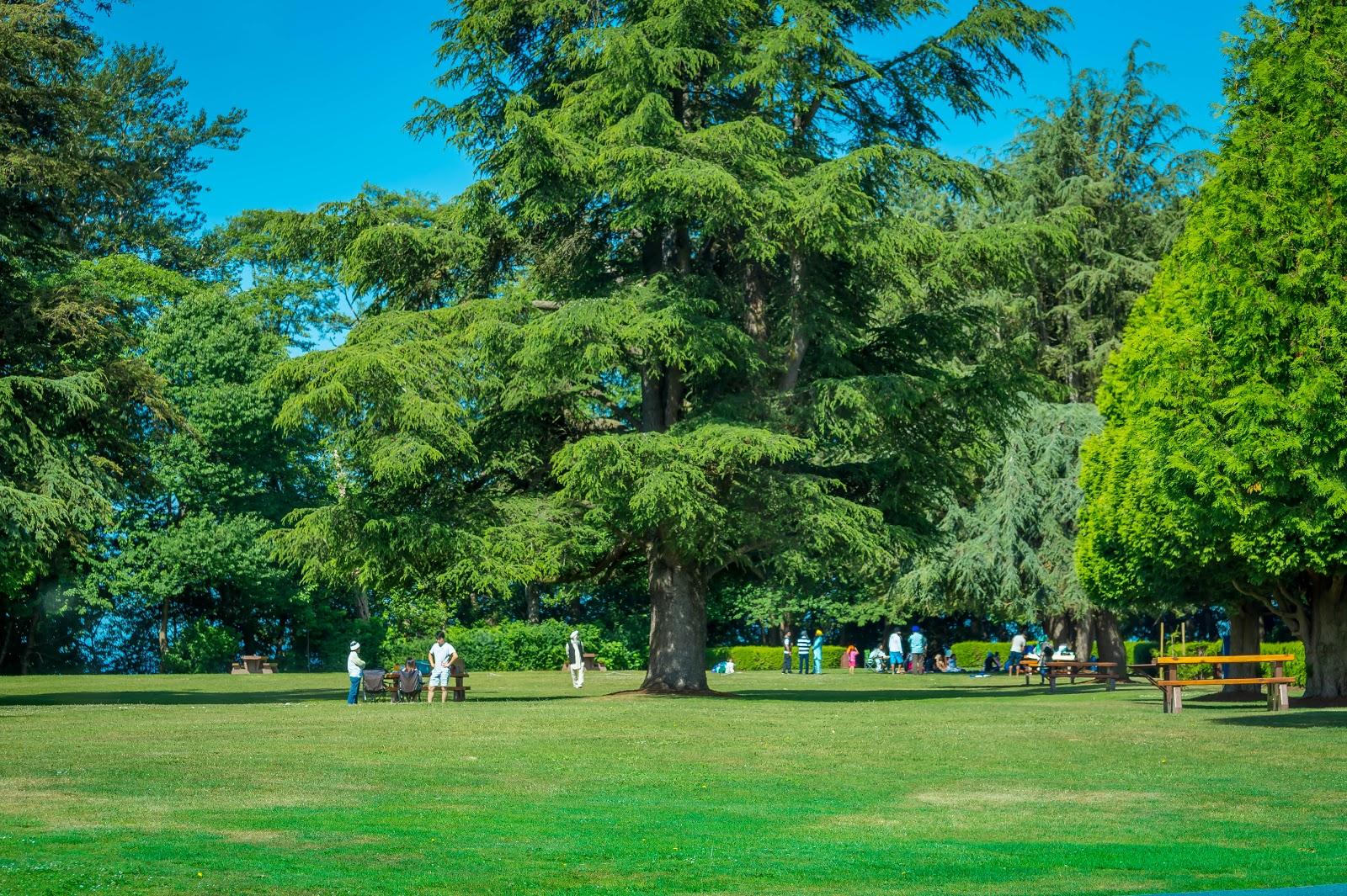 Для того чтобы размять ноги, здесь есть уютный парк со столами для пикника и прогулочными дорожками.