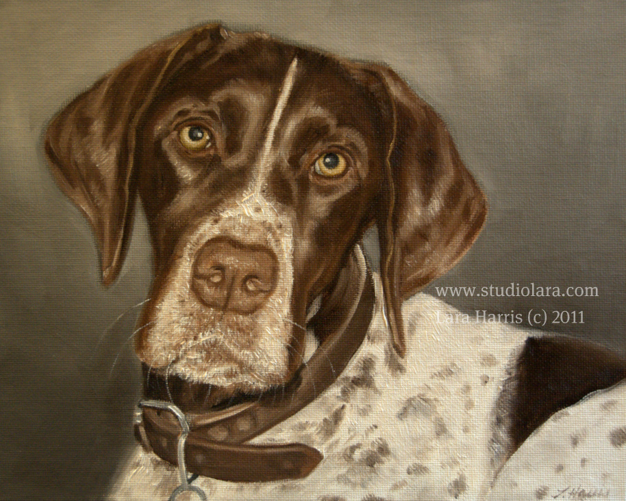 German Shorthaired Pointer Oil Painting